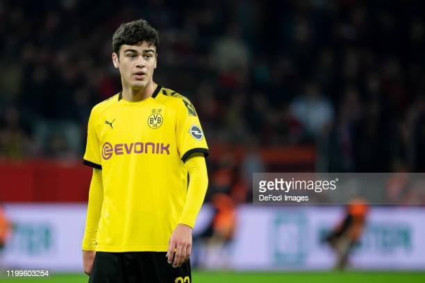 Giovanni Reyna of Borussia Dortmund looks on during the Bundesliga match between Bayer 04 Leverkusen and Borussia Dortmund at BayArena on February 8...