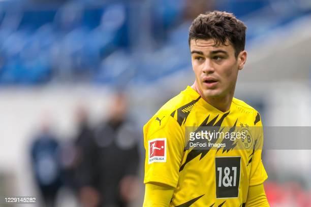 Giovanni Reyna of Borussia Dortmund Looks on during the Bundesliga match between TSG Hoffenheim and Borussia Dortmund at PreZero-Arena on October 17,...
