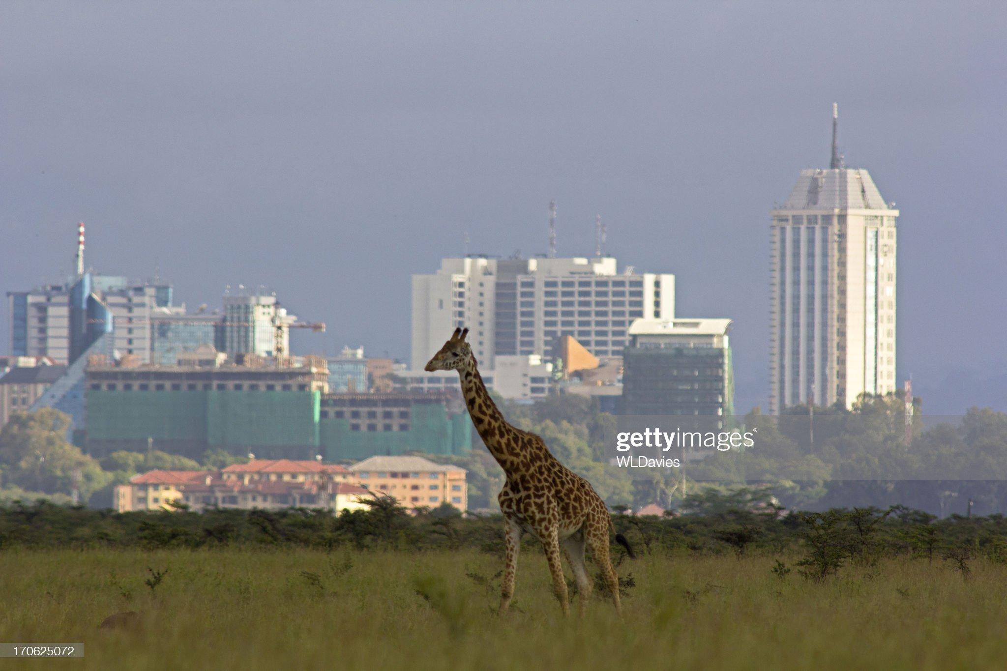 kenyans247