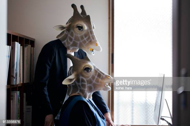 giraffe heads man and woman working from home - businesswear stock pictures, royalty-free photos & images