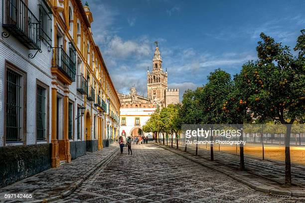 giralda tower - seville stock pictures, royalty-free photos & images