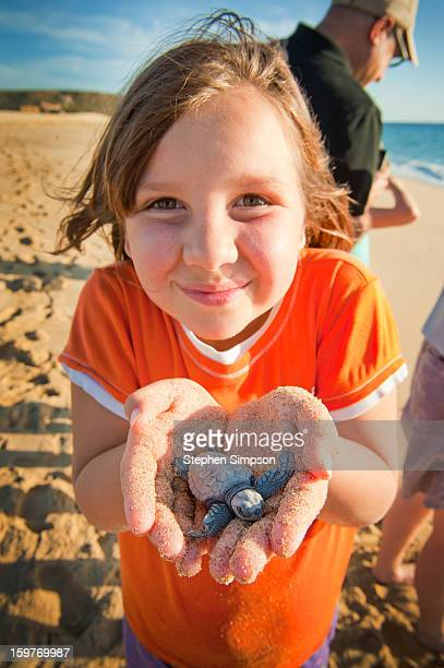 girl about to release pacific green sea turtles - メキシコ北部 ストックフォトと画像