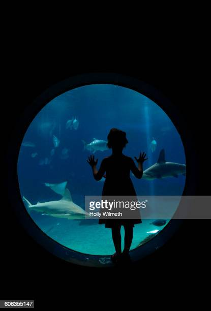 Girl admiring fish in aquarium