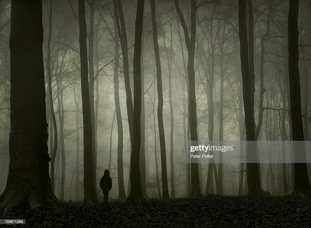 Girl alone in foggy forest : Stock Photo