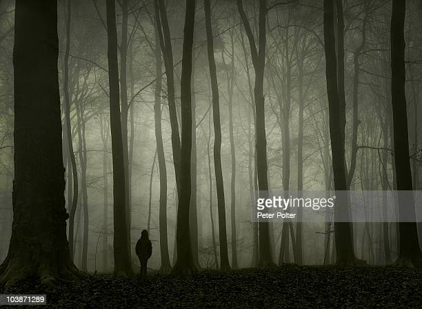 Girl alone in foggy forest