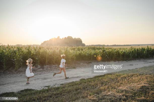 girl and boy running on a rural dirt track along cornfield - runaway stock pictures, royalty-free photos & images