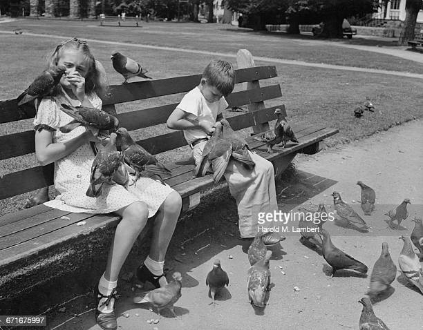 girl and boy sitting in garden and feeding pigeon - {{ collectponotification.cta }} foto e immagini stock