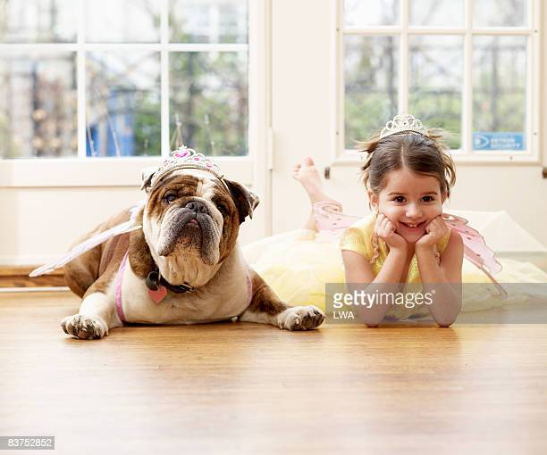 girl and british bulldog playing dressup - crown close up stock pictures, royalty-free photos & images
