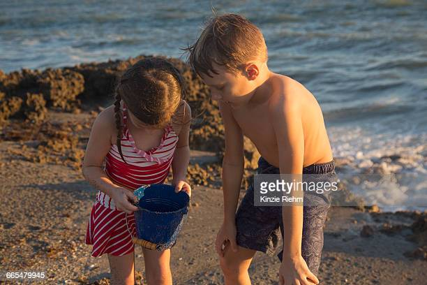 girl and brother peering into toy bucket on beach, blowing rocks preserve, jupiter island, florida, usa - blowing rocks preserve stock photos and pictures