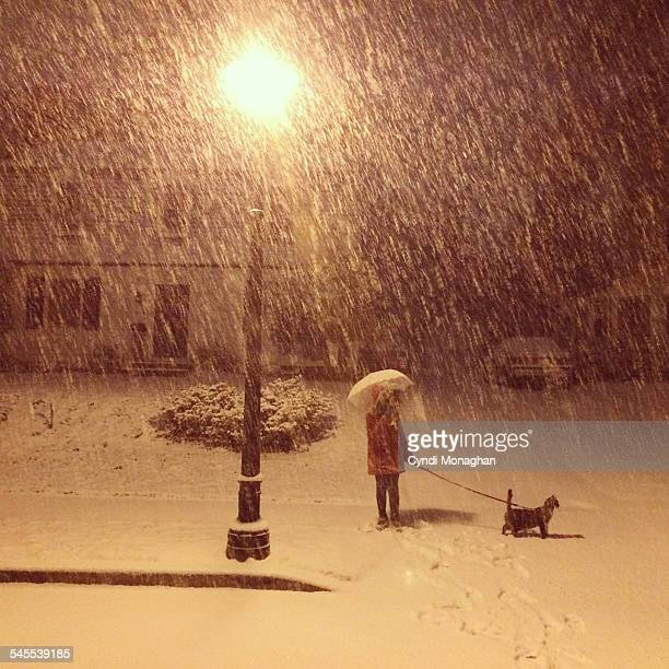 Girl and Cat in a Snowstorm