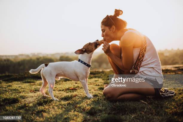 girl and dog eating ice cream together in a public park in the city - dog eats out girl stock photos and pictures