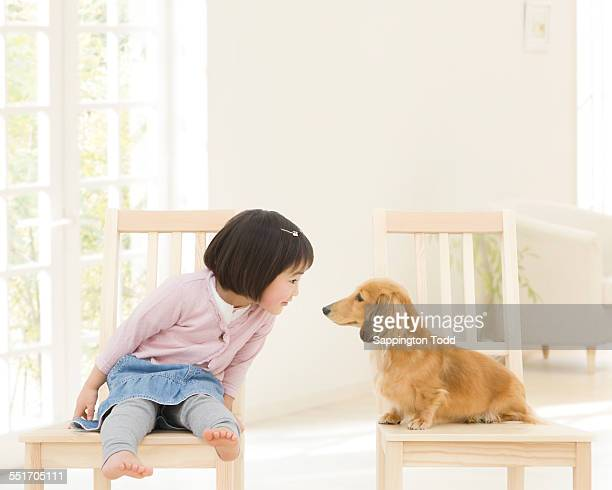 Girl And Dog Sitting On Chair