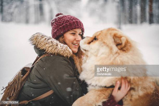 girl and her dog in snow - chow dog stock pictures, royalty-free photos & images