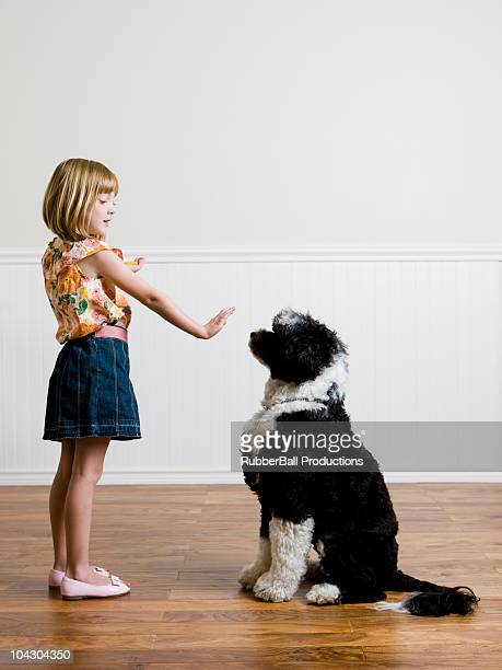 Menina e seu cão