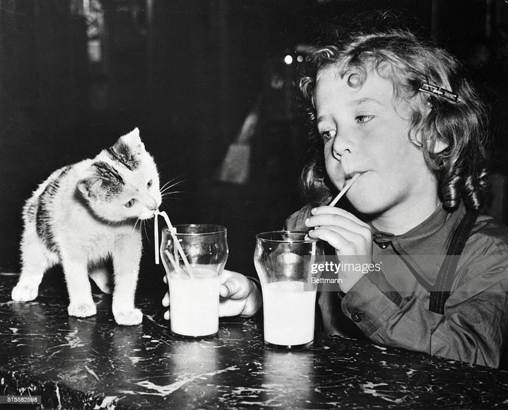 A girl and her kitten drink milk from straws.