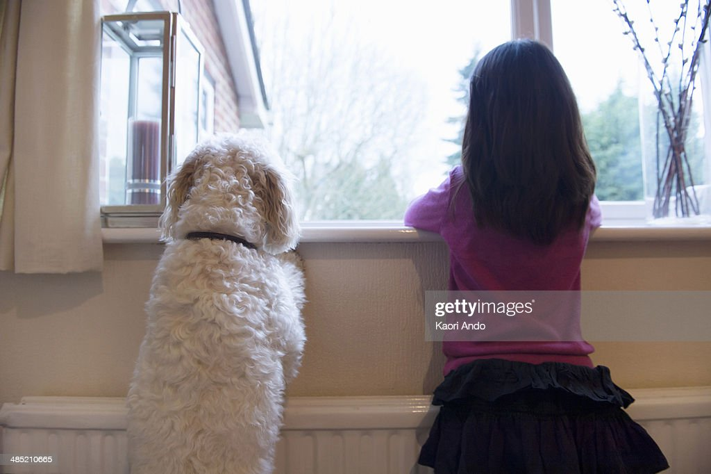 Girl and her pet dog standing and looking out of window : Stock Photo
