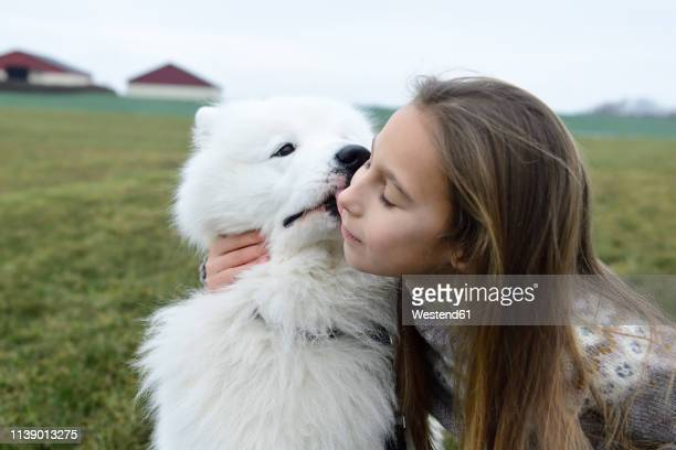 girl and her white dog cuddling on a meadow - girls licking girls stock pictures, royalty-free photos & images