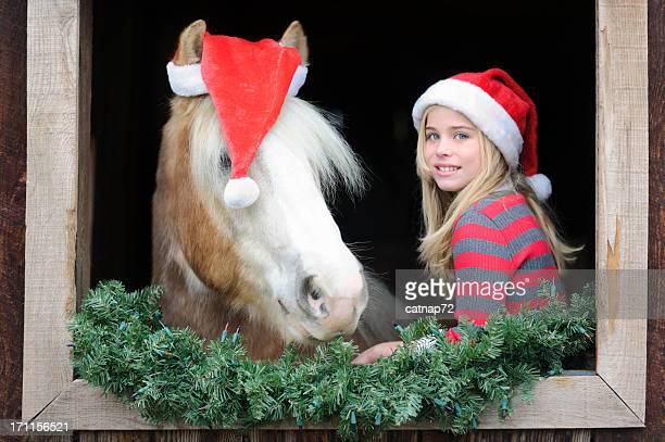 girl and horse in barn window with christmas santa hats - christmas horse stock pictures, royalty-free photos & images