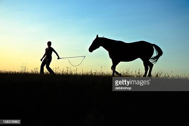 mädchen und pferd in silhouette - female whipping stock-fotos und bilder