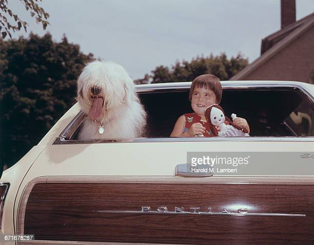 girl and puppy sitting in car  - {{relatedsearchurl(carousel.phrase)}} stock pictures, royalty-free photos & images