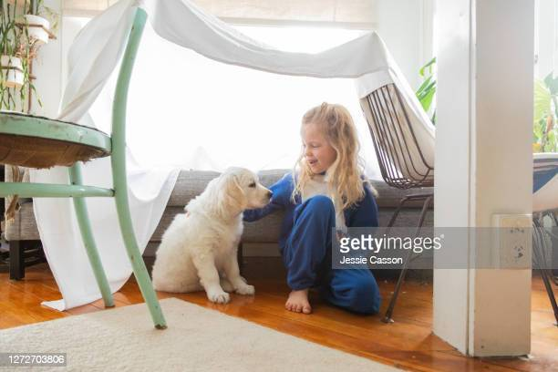 a girl and puppy spend time together in homemade camp - puppies stock pictures, royalty-free photos & images