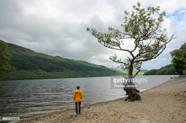 Girl and single tree at the lakeshore of Loch Lomond, Scotland