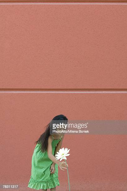 girl bending over to pick tall flower - long stem flowers stock pictures, royalty-free photos & images