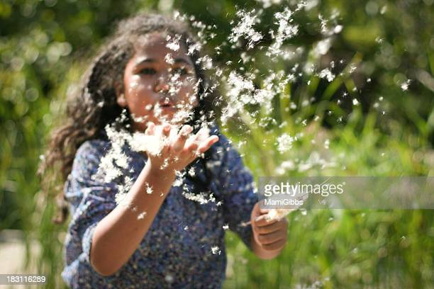 girl blowing at a typha latifolia seeds - mamigibbs stock photos and pictures