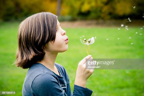 girl blowing blowball - innocence stock pictures, royalty-free photos & images