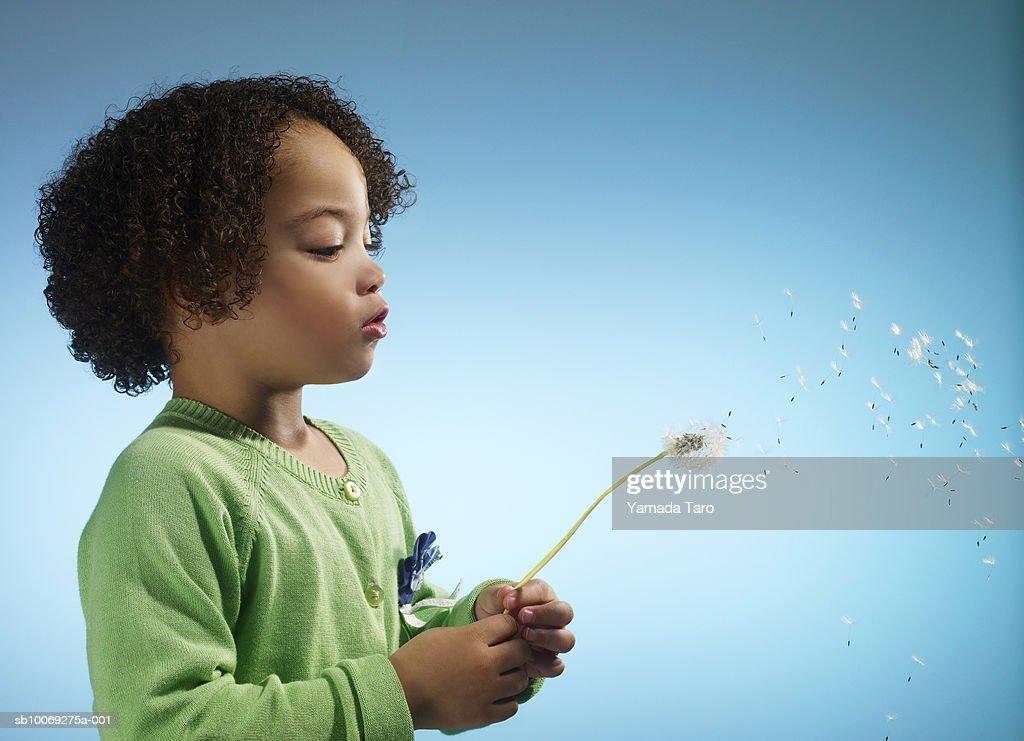 Girl (3-4) blowing Dandelion, close-up : Stockfoto