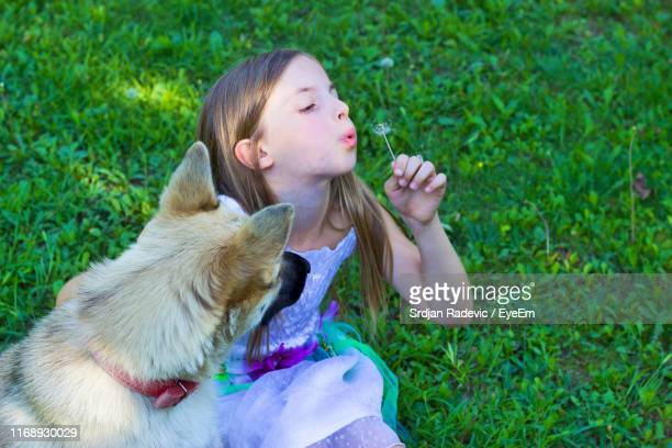 Girl Blowing Dandelion On Lawn