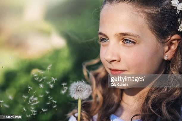 girl blowing dandelion - cris cantón photography fotografías e imágenes de stock