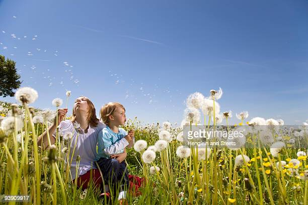 Girl, boy blowing dandelions