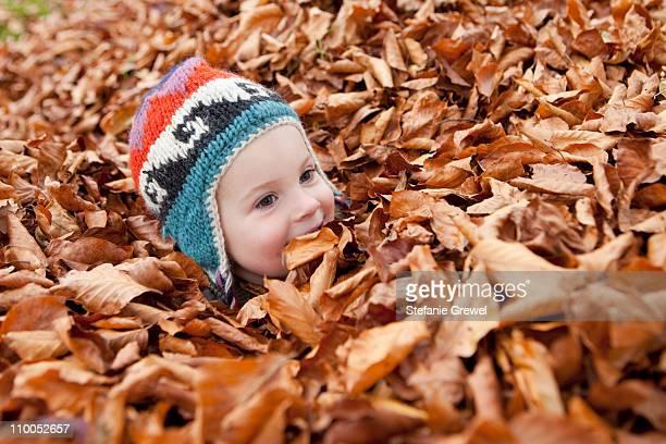 girl buried in autumn leaves - stefanie grewel stock-fotos und bilder