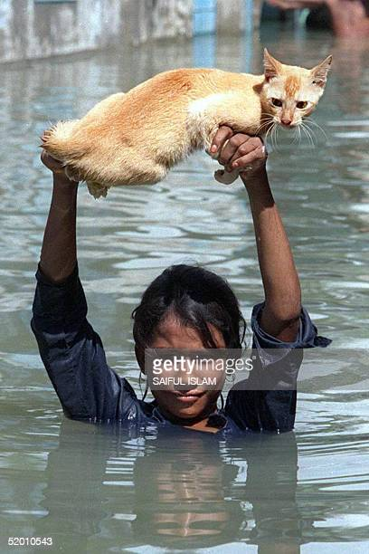 Girl carries her pet cat across a flooded road in the Dhaka suburb of Keraniganj 12 September. The century's worst floods in Bangladesh have left at...