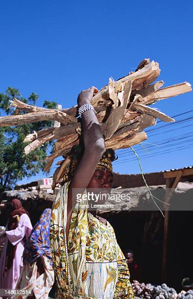 Girl carrying firewood on head.
