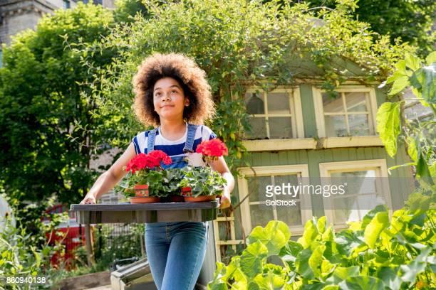 Girl Carrying Flowerpots