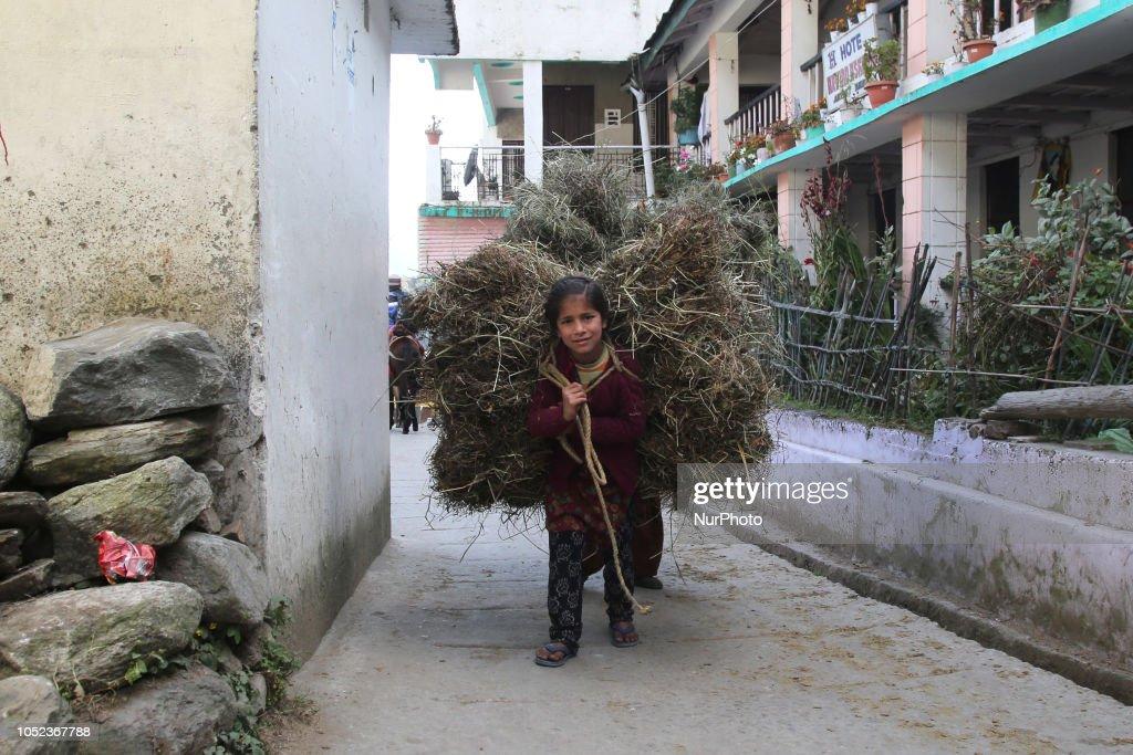 Daily Life In Uttarkashi : News Photo