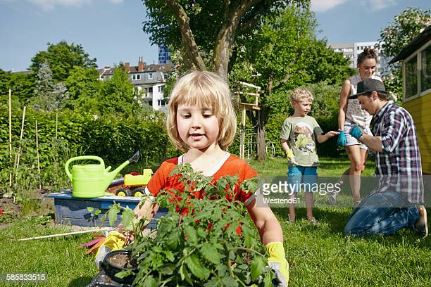 Girl carrying tray with seedlings in garden