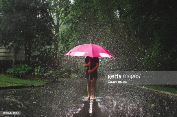girl carrying umbrella while standing on road against trees during rainfall - torrential rain stock pictures, royalty-free photos & images