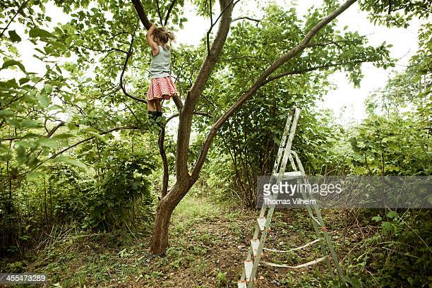 Girl climbing a tree on her own