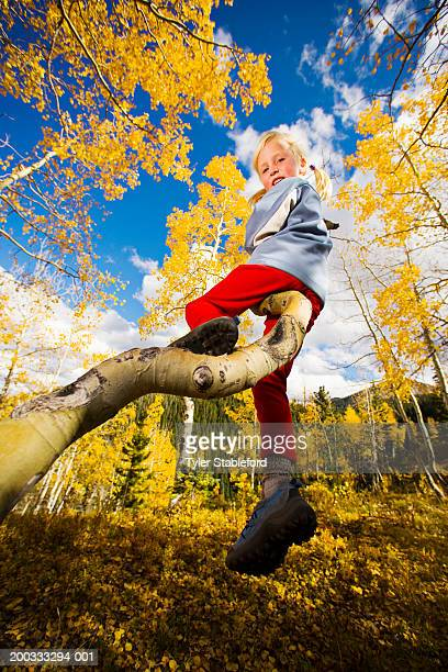 Girl (4-6) climbing aspen, looking backwards, portrait, low angle view