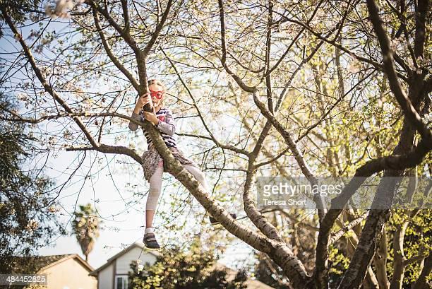 Girl Climbing High in Tree