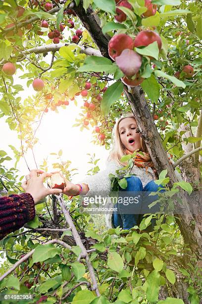 Girl climbing in tree giving an eaten apple to mother.