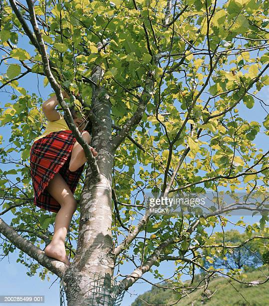 girl (3-5) climbing tree, low angle view - little girls up skirt fotografías e imágenes de stock