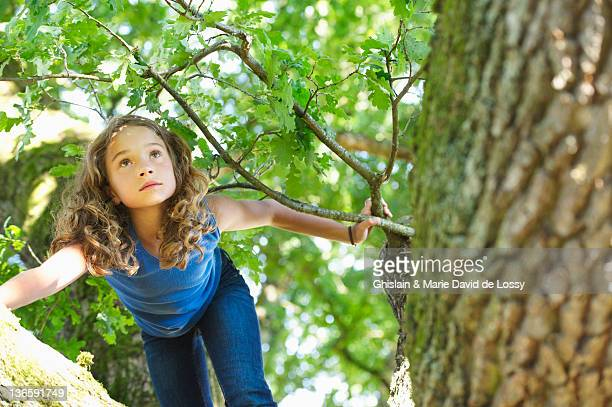 girl climbing tree - 10 11 jaar stockfoto's en -beelden
