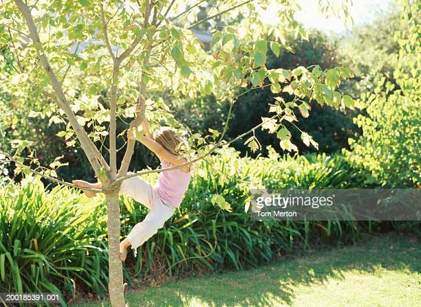 Girl (5-7) climbing tree