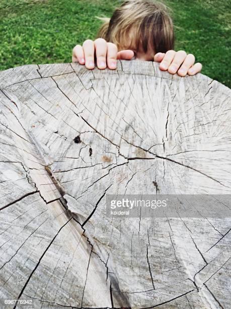 a girl climbs on a tree stump. forest and trees, environmental issues - activista fotografías e imágenes de stock