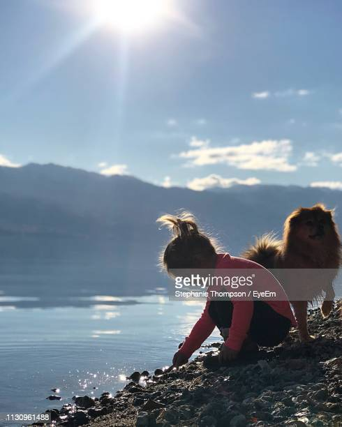 girl crouching by dog against sea at beach - kelowna stock pictures, royalty-free photos & images