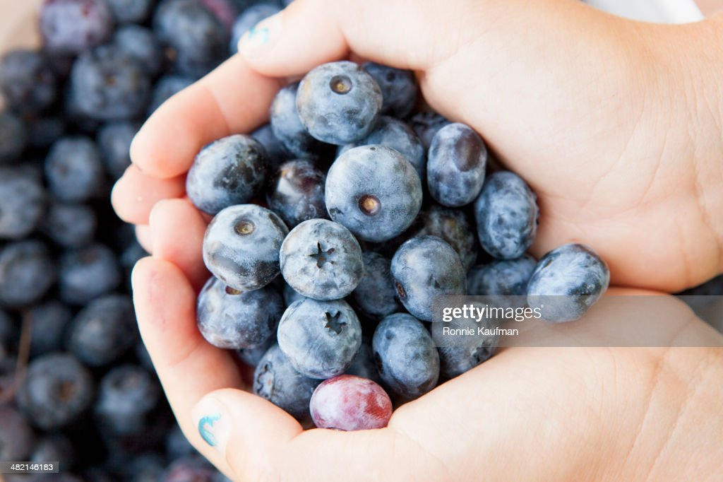 Girl cupping blueberries : Stock Photo